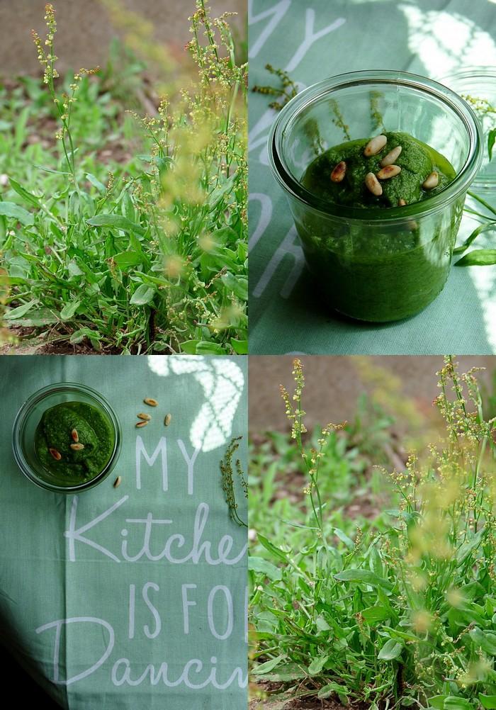 Rezept Pesto mit Sauerampfer und Pinienkernen