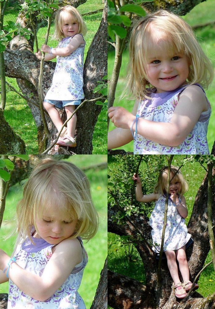 Unser Apfelbaum im Garten