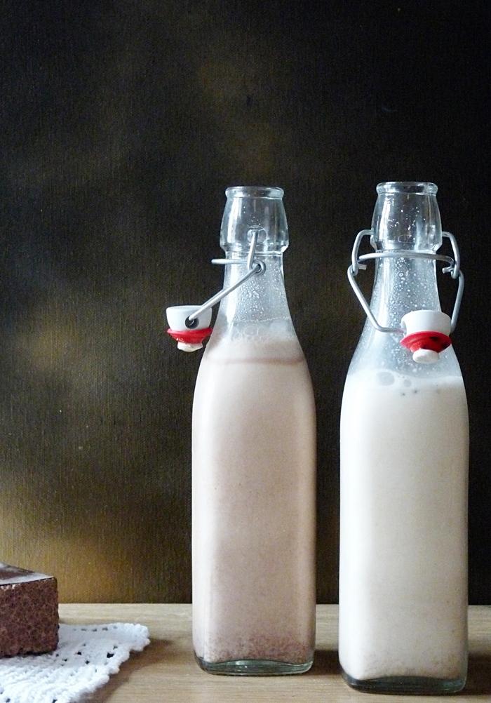 selbstgemachte Pflanzenmilch