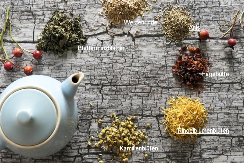 Tee gegen Erkältung und welche Kräuter dagegen helfen